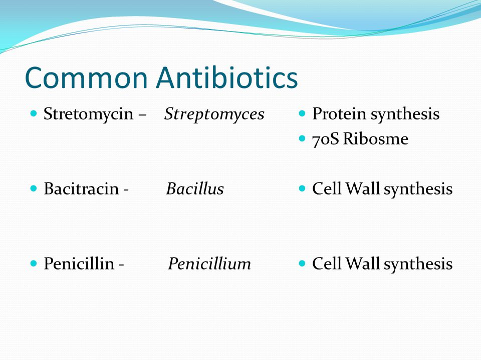 Common Antibiotics Stretomycin – Streptomyces Bacitracin - Bacillus