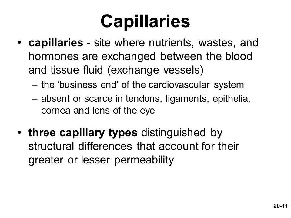 Capillaries capillaries - site where nutrients, wastes, and hormones are exchanged between the blood and tissue fluid (exchange vessels)