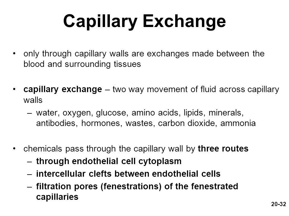 Capillary Exchange only through capillary walls are exchanges made between the blood and surrounding tissues.