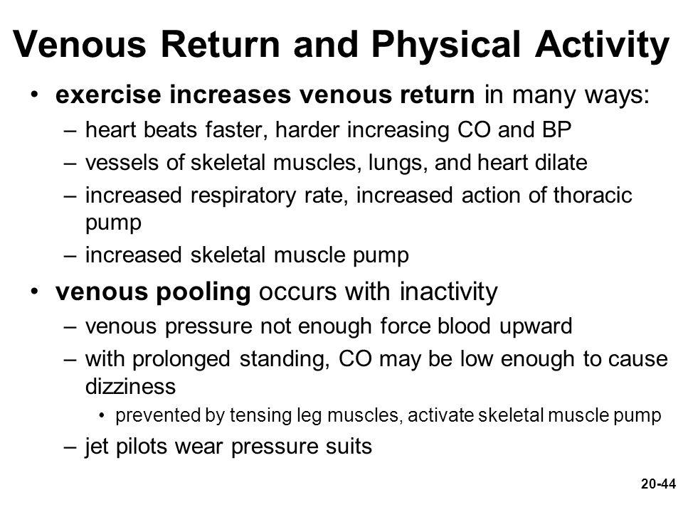 Venous Return and Physical Activity