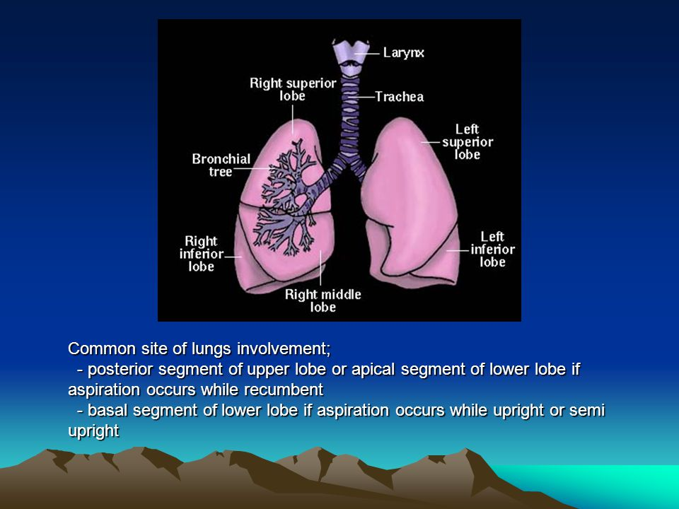 Common site of lungs involvement;