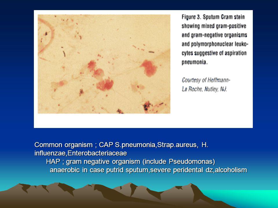 Common organism ; CAP S. pneumonia,Strap. aureus, H