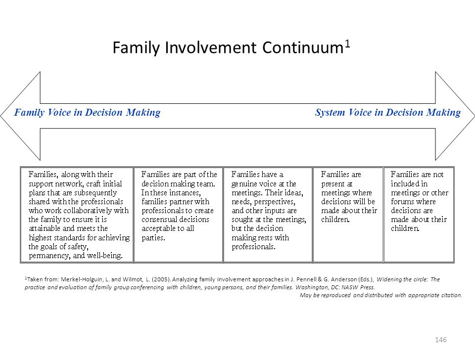 Family Voice in Decision Making System Voice in Decision Making