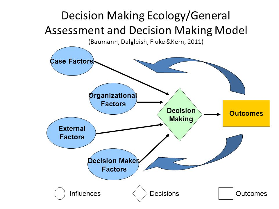 Decision Making Ecology/General Assessment and Decision Making Model