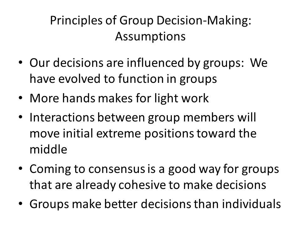 Principles of Group Decision-Making: Assumptions