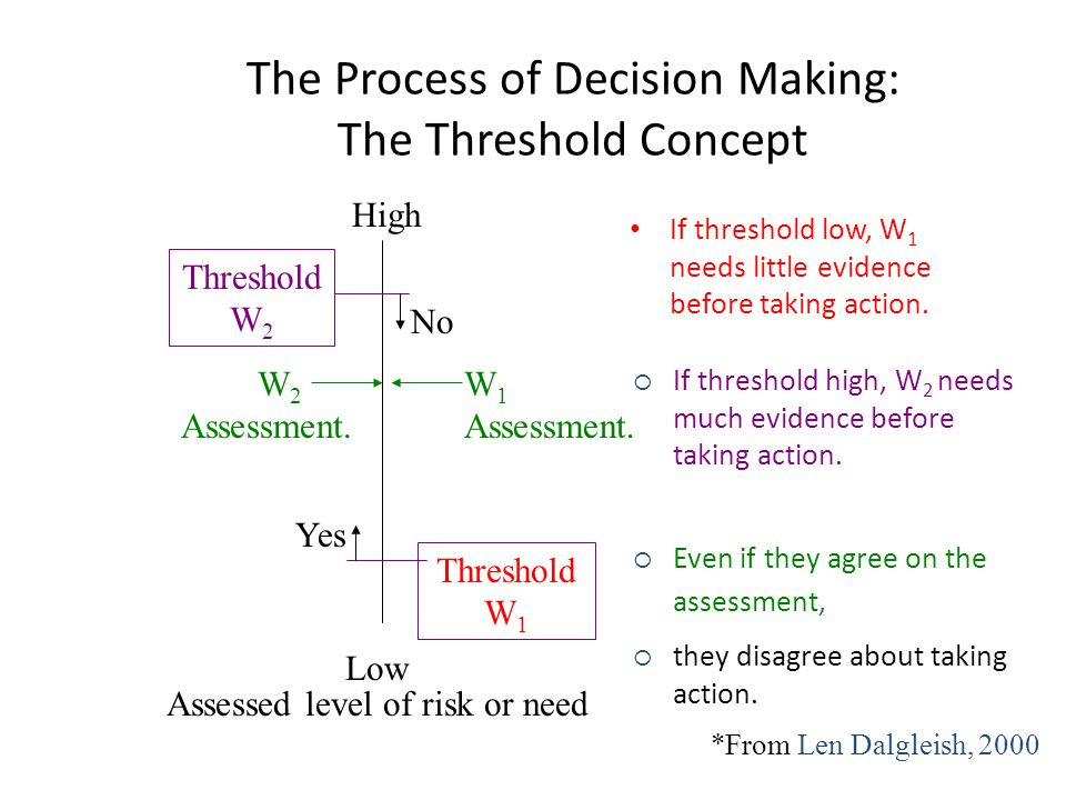 The Process of Decision Making: The Threshold Concept
