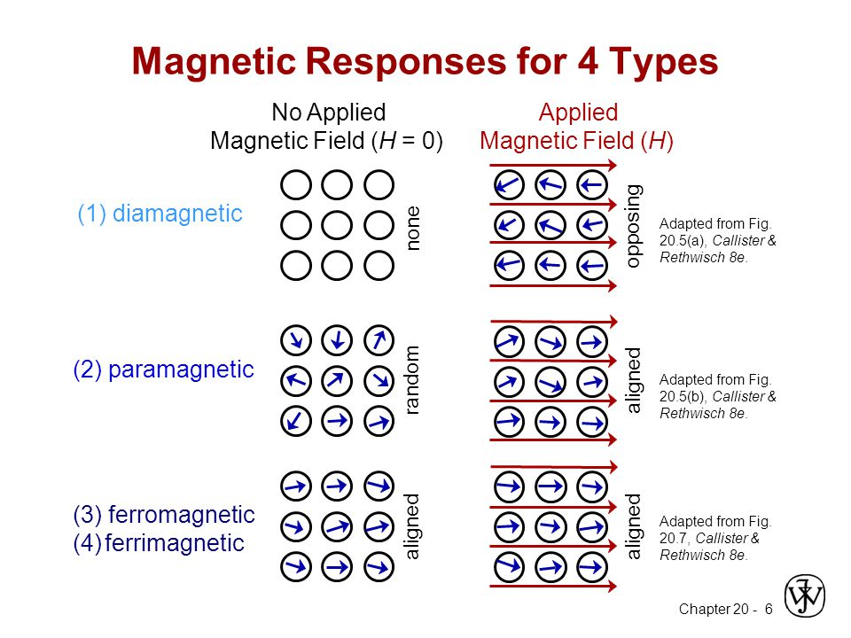 Magnetic Responses for 4 Types