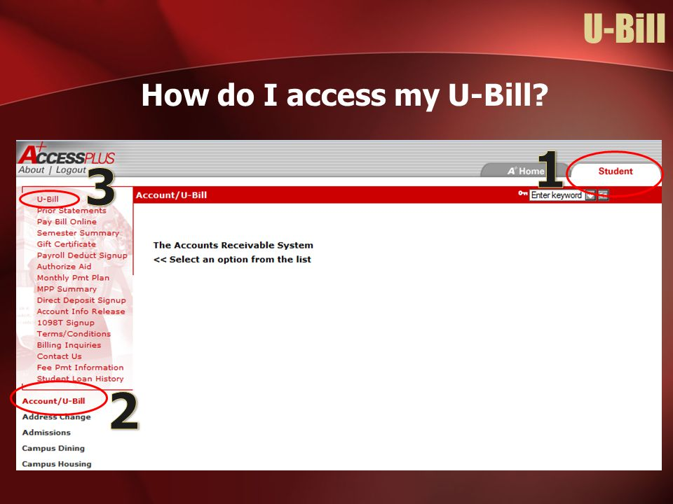 How do I access my U-Bill