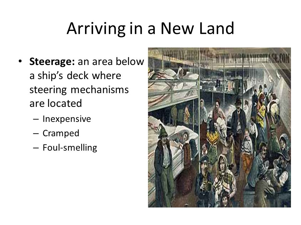Arriving in a New Land Steerage: an area below a ship's deck where steering mechanisms are located.