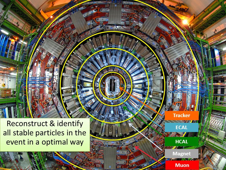 Tracker Reconstruct & identify all stable particles in the event in a optimal way. ECAL. HCAL. Magnet.