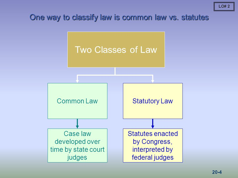 One way to classify law is common law vs. statutes