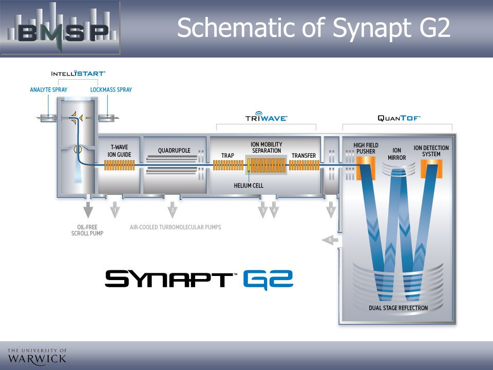Schematic of Synapt G2