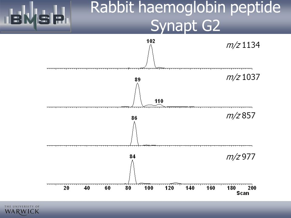 Rabbit haemoglobin peptide Synapt G2