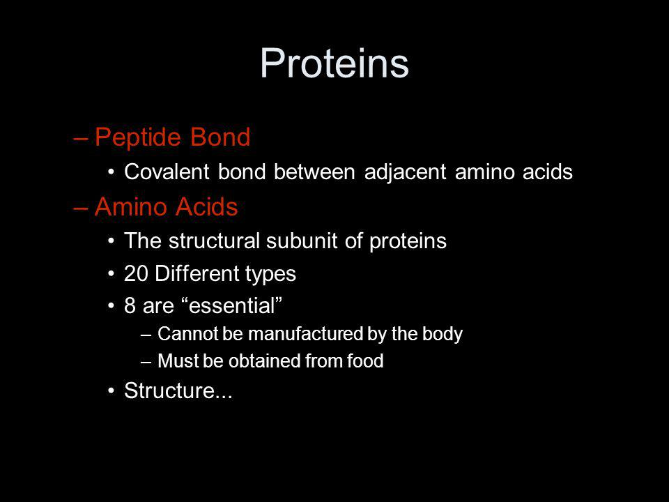 Proteins Peptide Bond Amino Acids