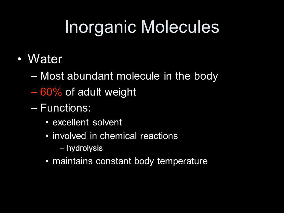 Inorganic Molecules Water Most abundant molecule in the body