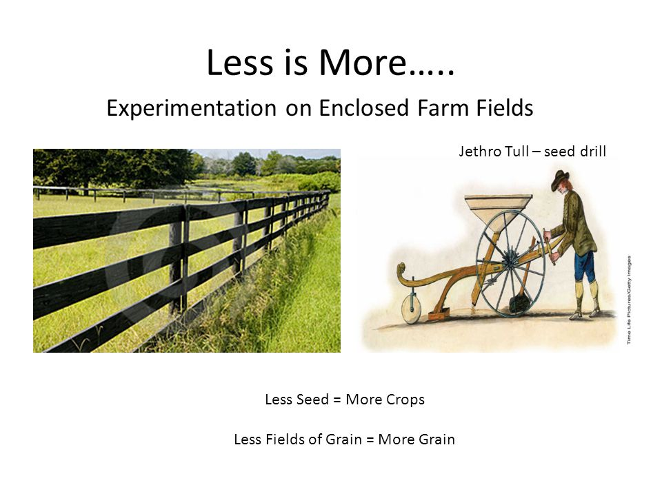 Less Fields of Grain = More Grain