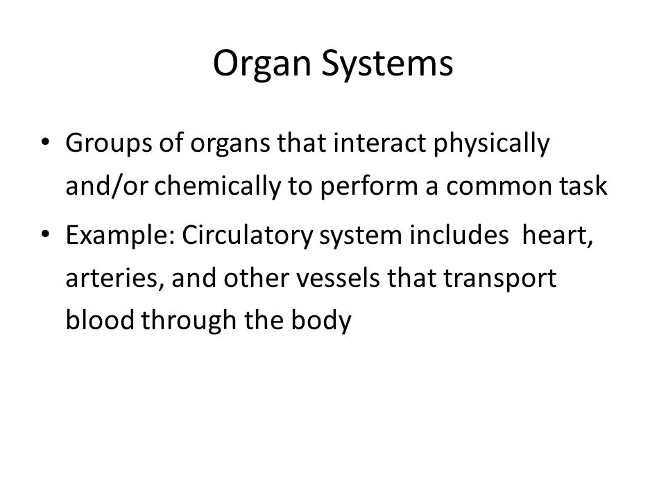 Organ Systems Groups of organs that interact physically and/or chemically to perform a common task.
