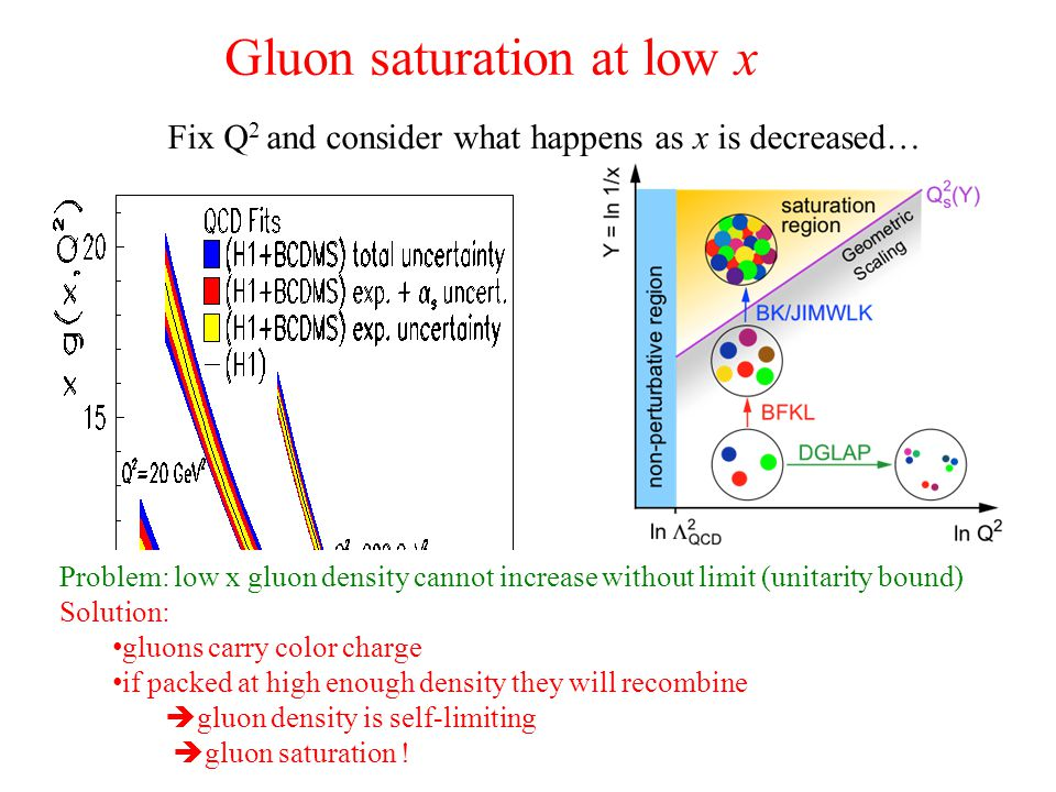 Gluon saturation at low x