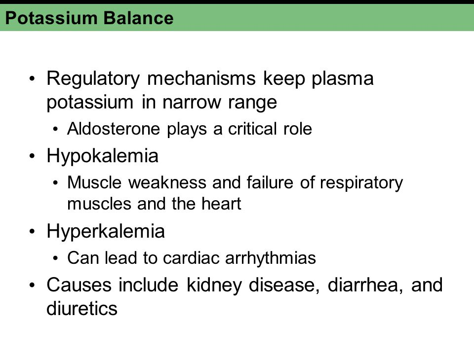 Regulatory mechanisms keep plasma potassium in narrow range