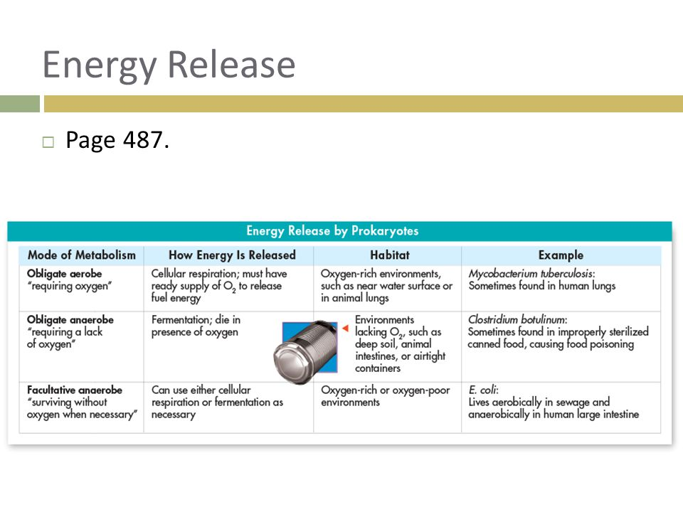 Energy Release Page 487.