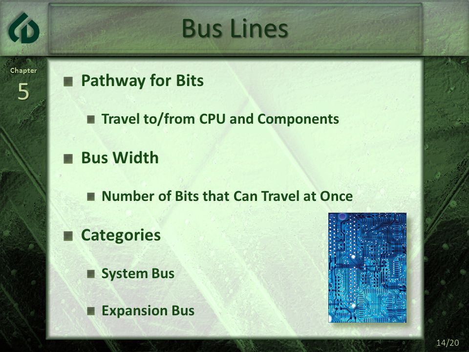 Bus Lines Pathway for Bits Bus Width Categories