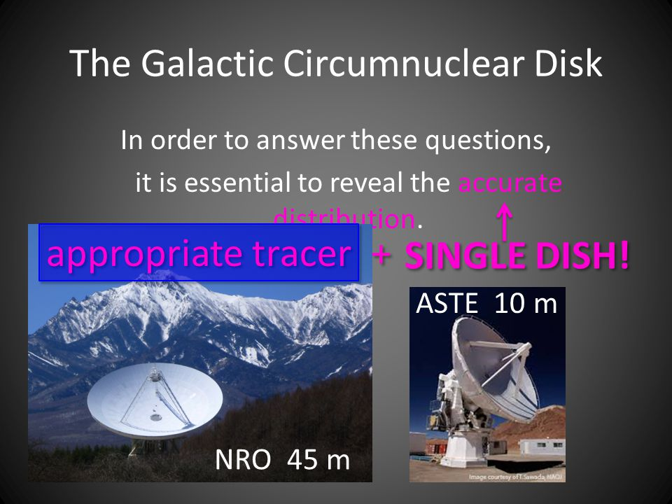 The Galactic Circumnuclear Disk