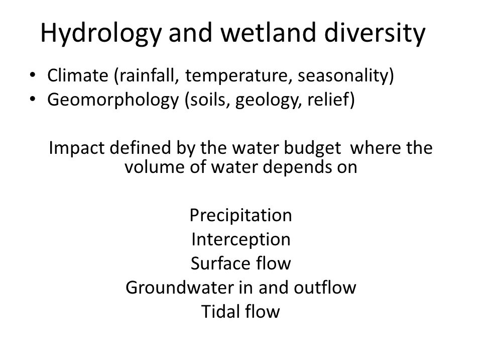 Hydrology and wetland diversity