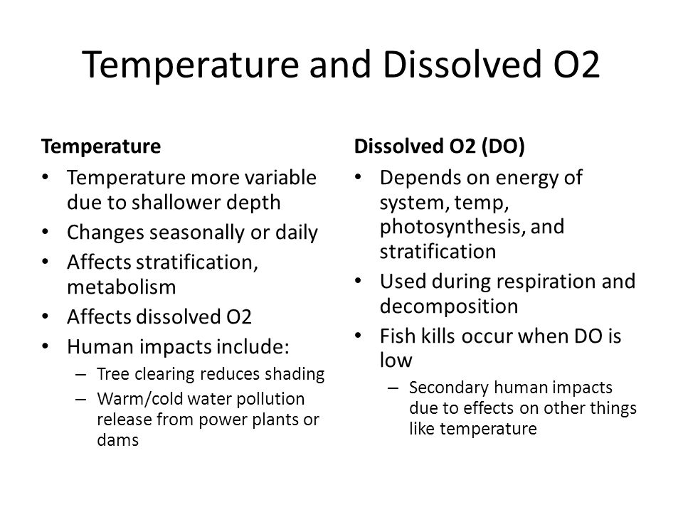Temperature and Dissolved O2