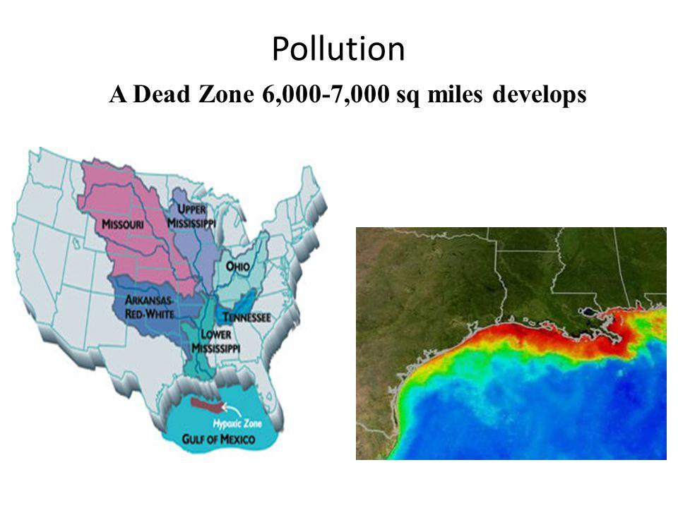 A Dead Zone 6,000-7,000 sq miles develops