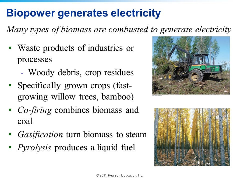 Biopower generates electricity
