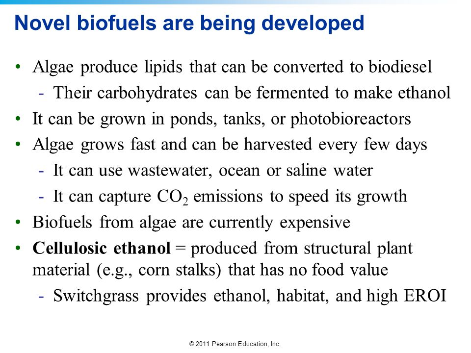 Novel biofuels are being developed