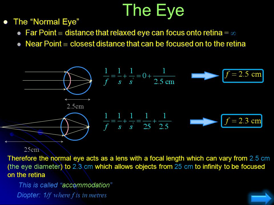 The Eye The Normal Eye