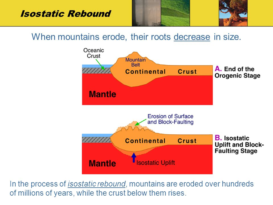 When mountains erode, their roots decrease in size.