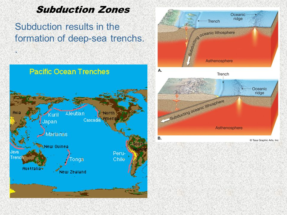Subduction Zones Subduction results in the formation of deep-sea trenchs. .