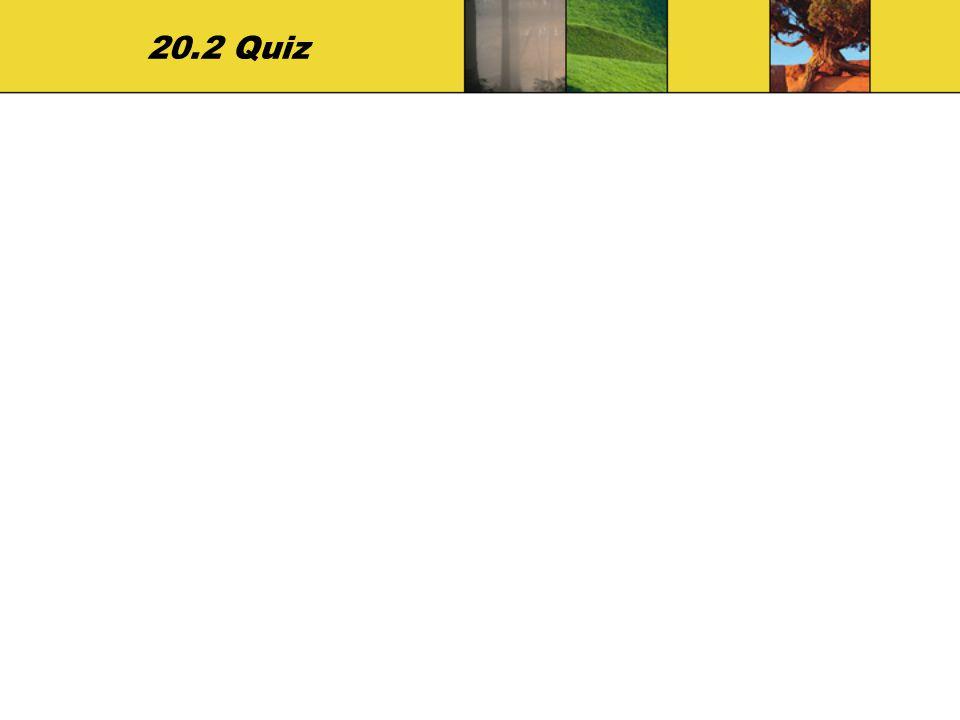 20.2 Quiz
