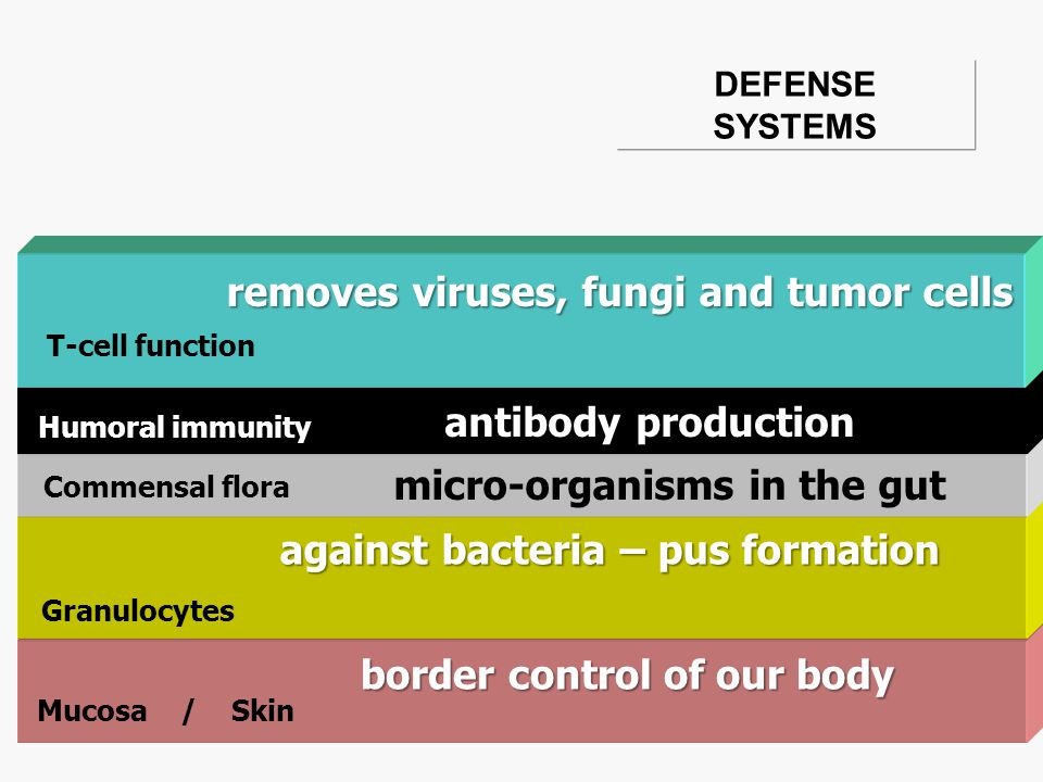 DEFENSE SYSTEMS T-cell function Humoral immunity Commensal flora