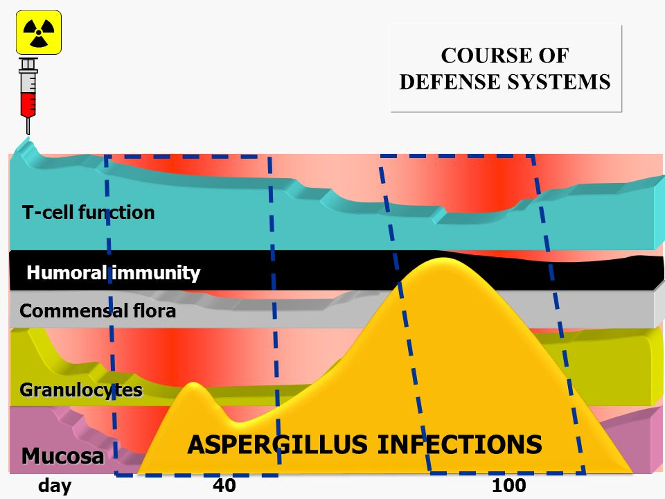 INFECTIOUS AGENTS IN RELATION TO THE COURSE OF DEFENSE SYSTEMS Garcia-Vidal et al. Clin Infect Dis 2008; 47:1041-1050