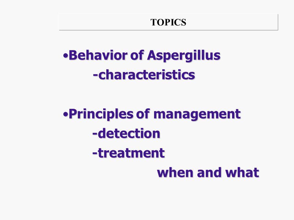 Behavior of Aspergillus -characteristics