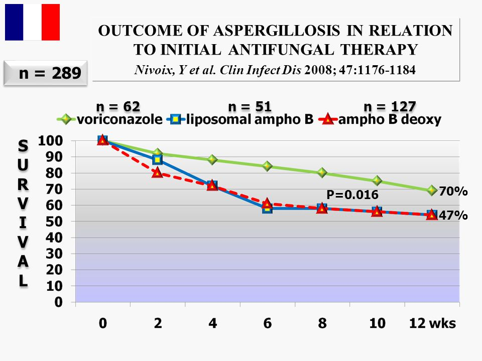 OUTCOME OF THERAPY FOR ASPERGILLOSIS ARISING DURING AML IN DAILY PRACTICE Pagano et al. SEIFEM 2008