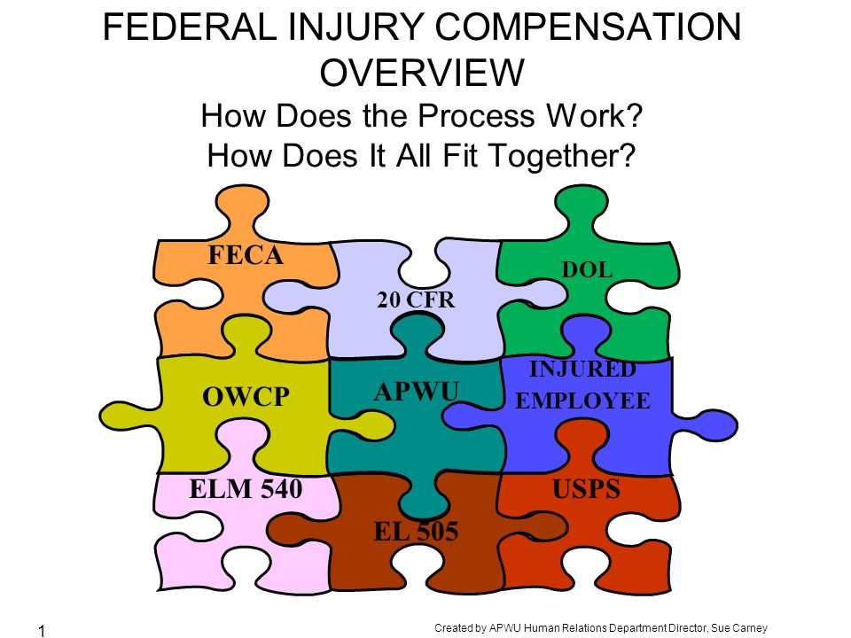FEDERAL INJURY COMPENSATION OVERVIEW How Does the Process Work