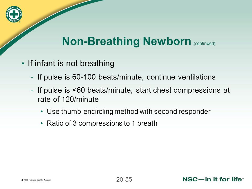 Non-Breathing Newborn (continued)