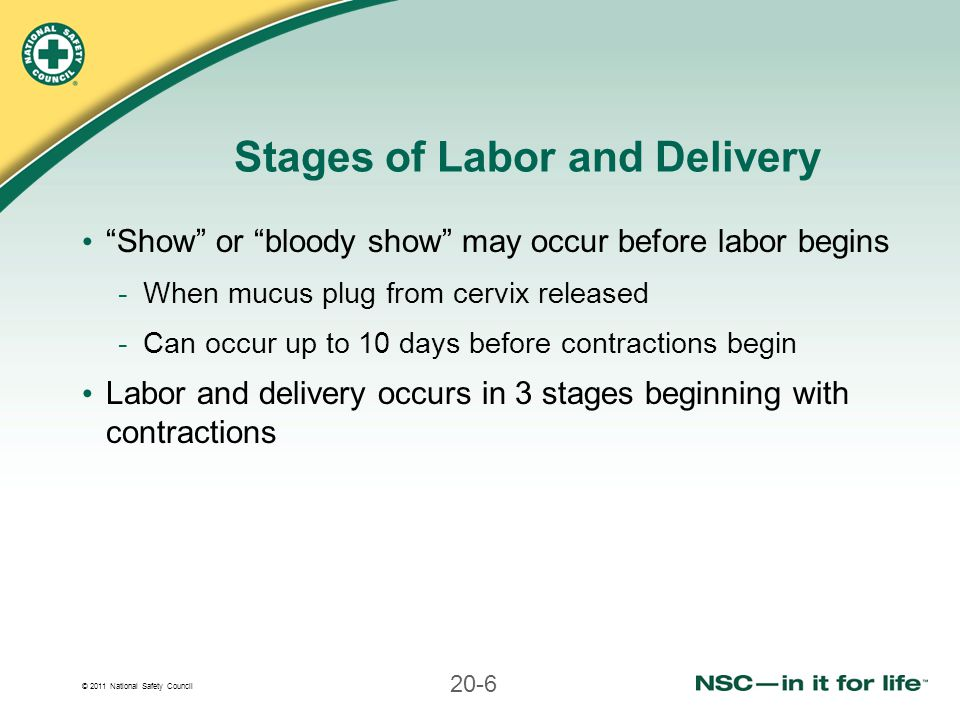 Stages of Labor and Delivery