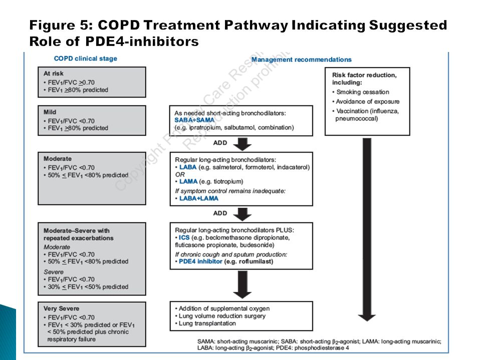Figure 5: COPD Treatment Pathway Indicating Suggested Role of PDE4-inhibitors
