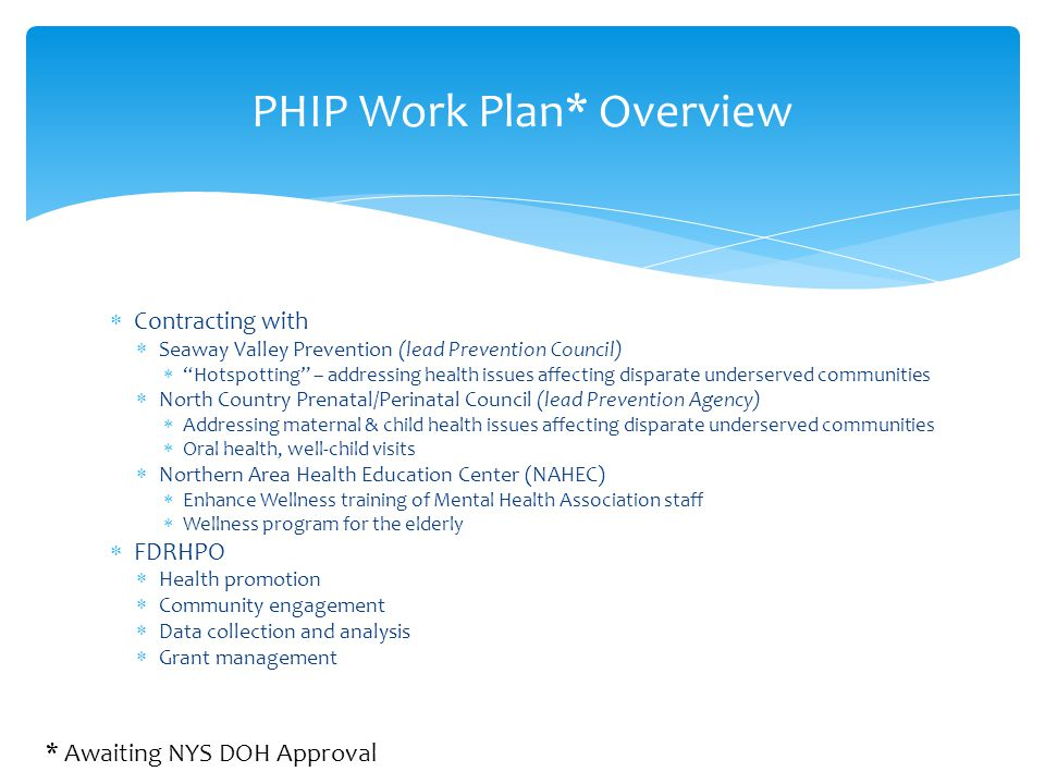 PHIP Work Plan* Overview