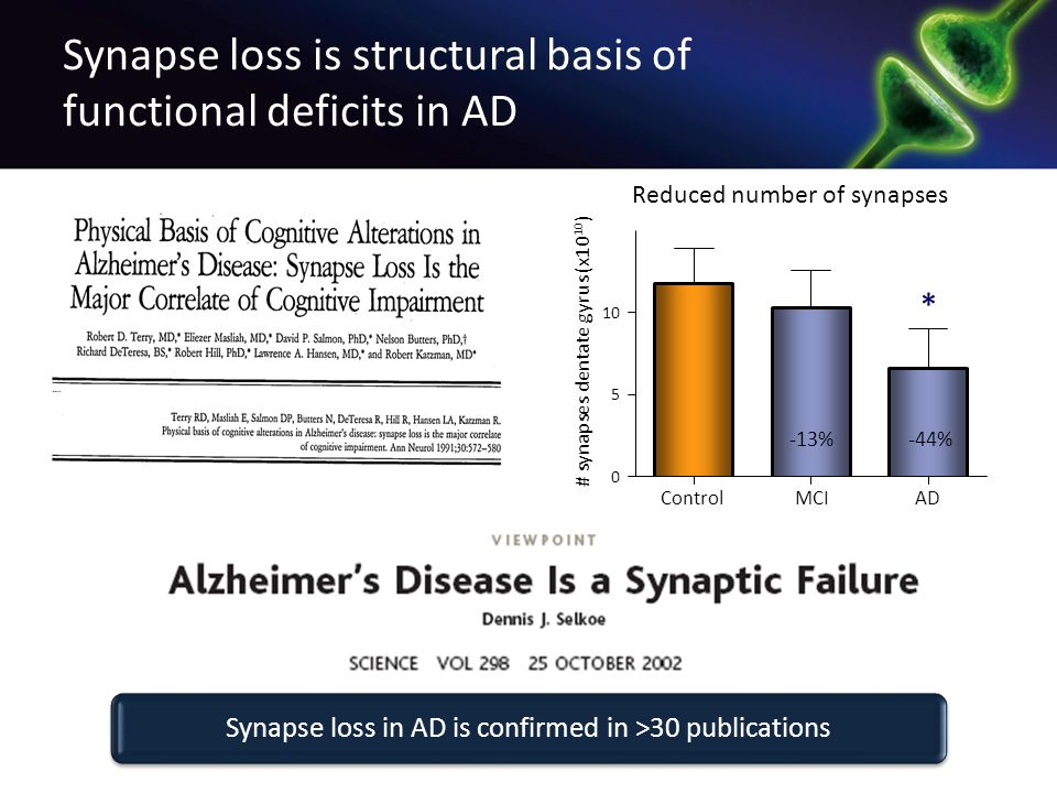 Synapse loss is structural basis of functional deficits in AD