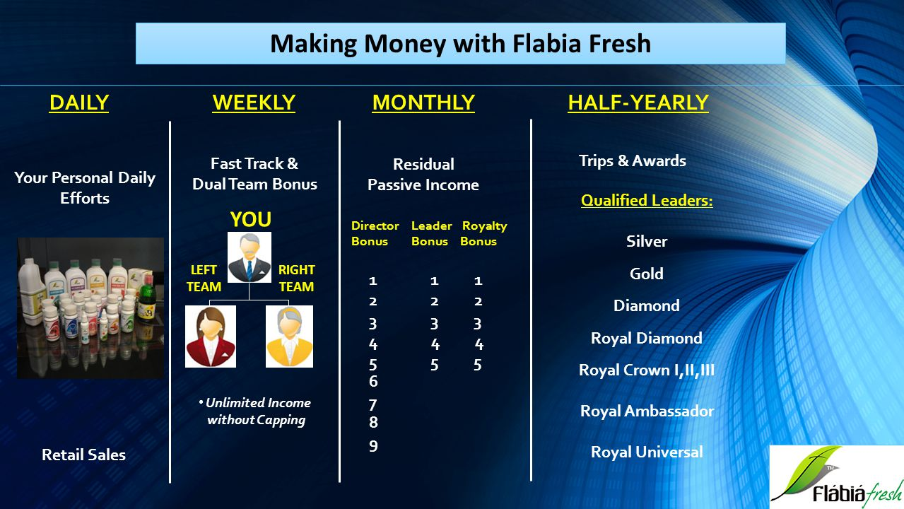 Making Money with Flabia Fresh Your Personal Daily Efforts