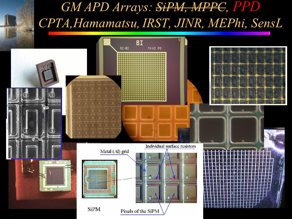 GM APD Arrays: SiPM, MPPC, PPD CPTA,Hamamatsu, IRST, JINR, MEPhi, SensL