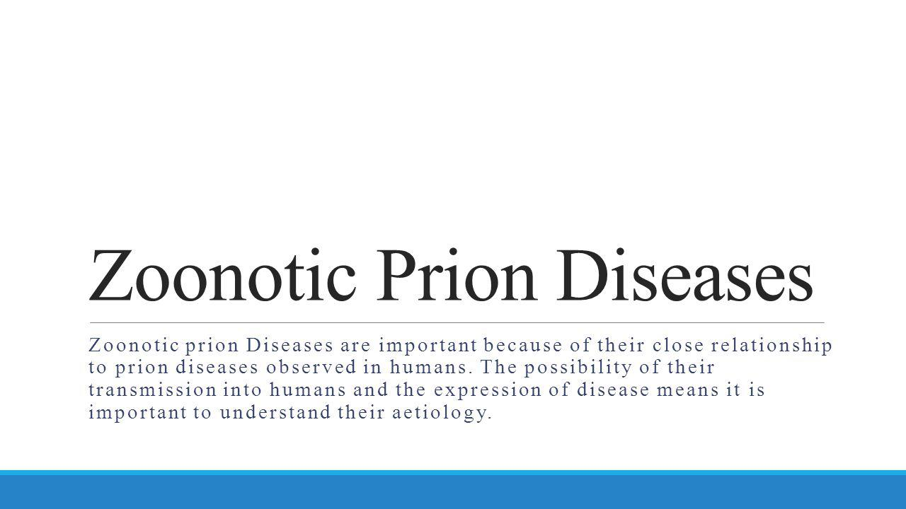 Zoonotic Prion Diseases