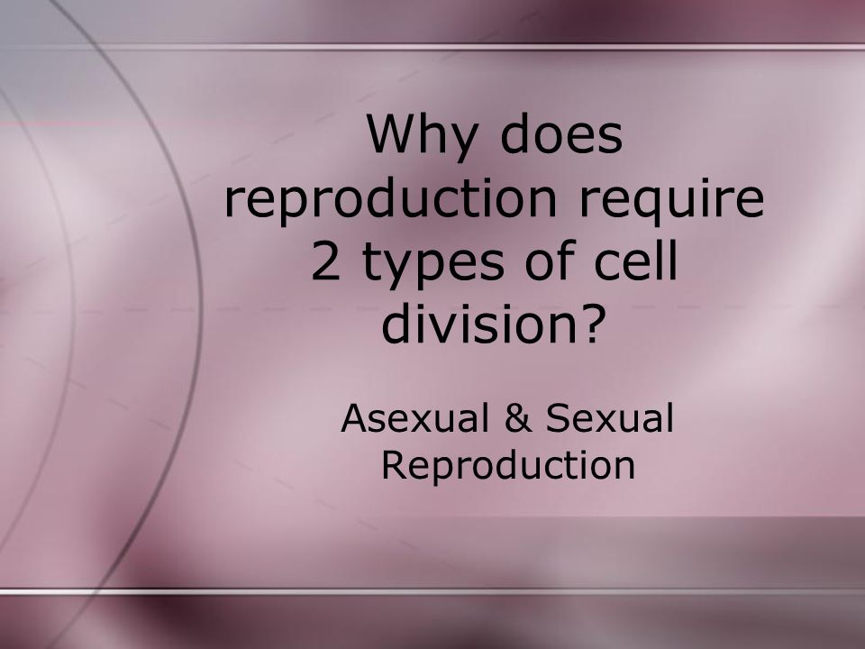 Why does reproduction require 2 types of cell division