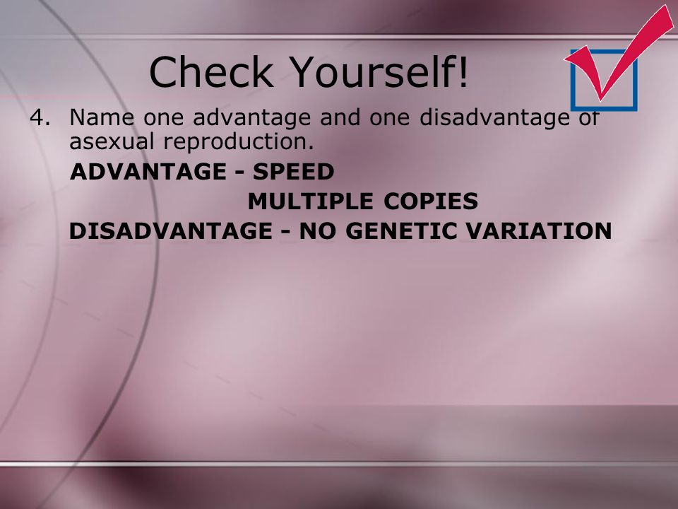 Check Yourself! Name one advantage and one disadvantage of asexual reproduction. ADVANTAGE - SPEED.